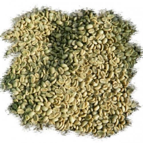 Кофе зеленый нежареный в зернах Робуста